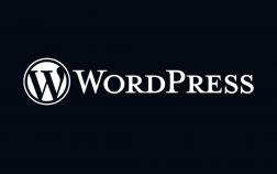 15 Interesting Facts About WordPress_Diken David 2